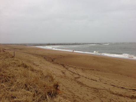 Plum Island Beach March 12 2013